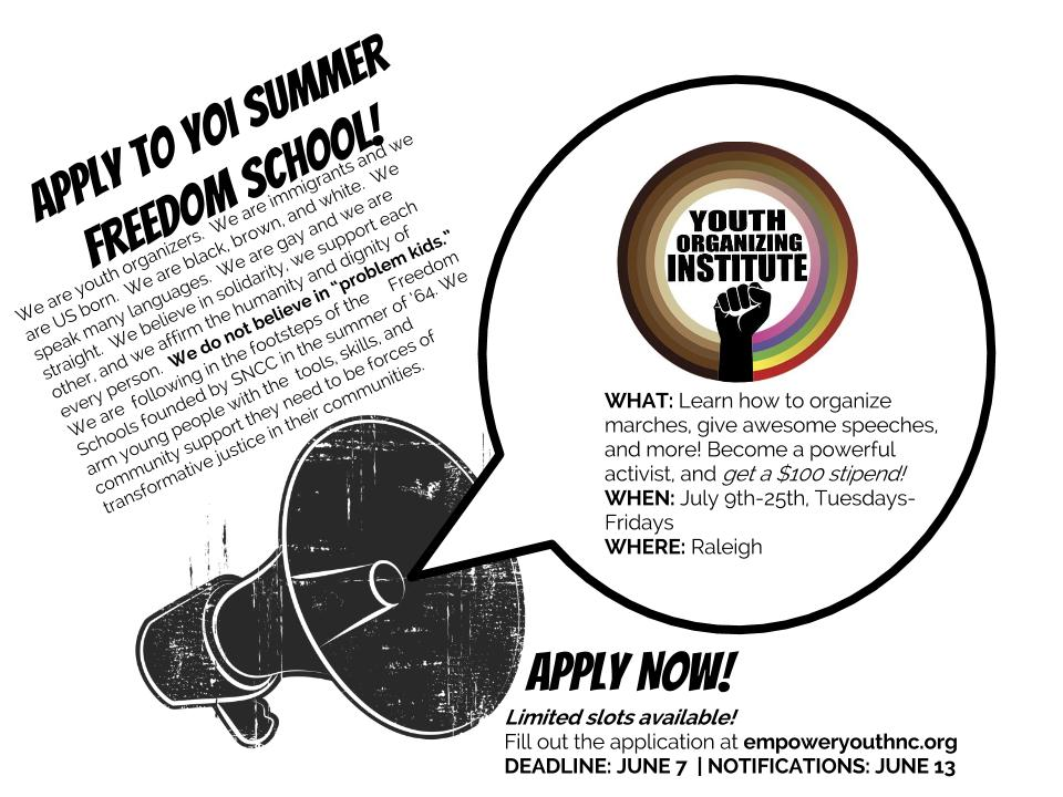 Apply to be a part of YOI Summer Freedom School  July 8-25, 2014