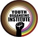 The Youth Organizing Institute